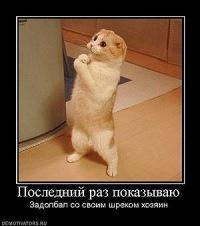 Алена Юрская, 12 августа , Санкт-Петербург, id71905135