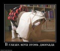Ира Редичкина, 17 ноября 1994, Нефтекамск, id18917261