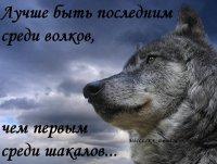 Ildirim Mammadov, 20 сентября , Житомир, id72347966