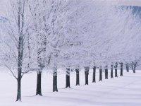 Hekmatullah_hekmat19 Haji, Одесса, id74169446