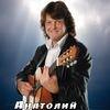 Анатолий Шенберг в Ярославле