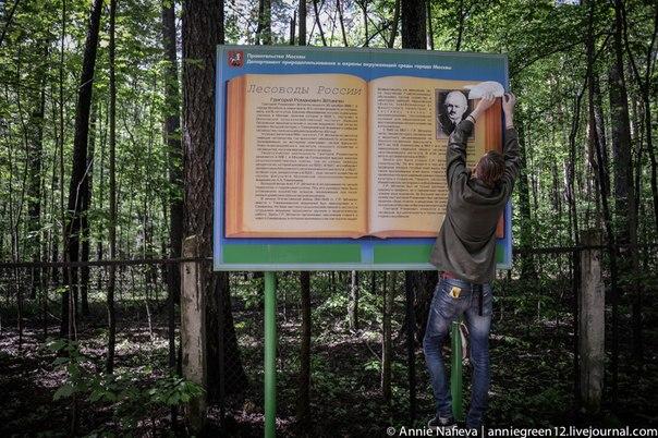 Великие лесоводы России больше не в силах молчать!