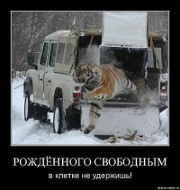 Сергей Гран при, 29 марта 1995, Тольятти, id123589455