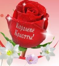 картинки с надписями цветов