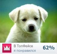 Дмитрий Воронцов, 7 октября 1984, Кривой Рог, id127121500