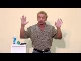 Андрей Лапин 2013 лекция 20 мая
