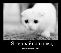 Коля Вася, 28 октября 1988, Орел, id69465860