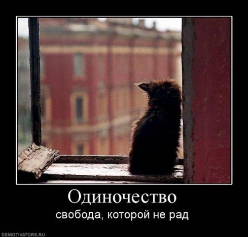 http://cs939.vkontakte.ru/u1141581/94052099/x_c7e5d51d.jpg