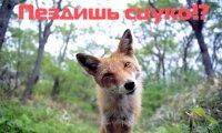Антон Цветаев, 18 апреля , Киев, id14092952