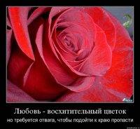 Юлия Елисеева, 24 июля 1995, Санкт-Петербург, id98605879