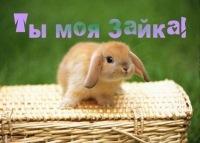 Мария Витченко, 2 сентября , Краснодар, id117537565