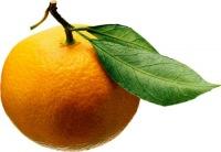 Апельсин _**, 13 сентября 1973, Мариуполь, id152063576