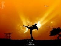 Kyokushin Karate, 1 марта , Береза, id155490083