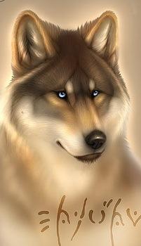http://cs9404.vkontakte.ru/u7038385/122150556/x_1f45c96b.jpg