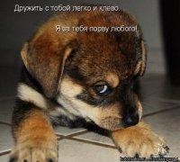 Виктория Никитенко, 8 мая 1997, Одесса, id64256854