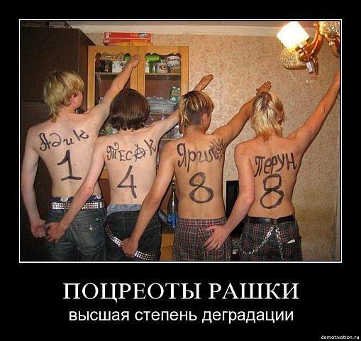 http://cs9409.vkontakte.ru/u68290320/109627464/x_e8c0bb1b.jpg