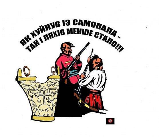 Качиньский превзошел сам себя в непонимании украинской и польской истории, - Вятрович - Цензор.НЕТ 3551