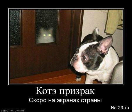 Сандра сказала, где находится автошкола в кереевске улица фото представьте