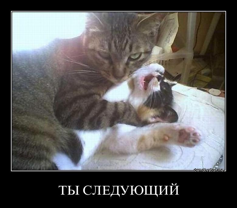 Прочь отдохнуть, можно ли православным смотреть фильм страсти христовы говорит, что