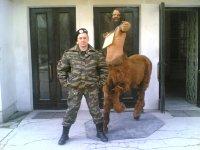 Alekc Dyavol, 21 ноября 1983, Архангельск, id53296541