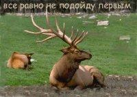 Евгений Струлис, 9 июня 1984, Сморгонь, id26938029