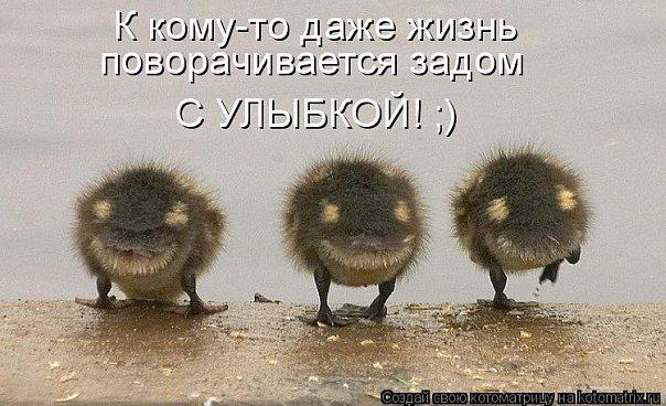 давайте посмеемся - Страница 5 X_67f89855