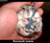Алексей Бабакин, 28 февраля , Чебоксары, id32566109