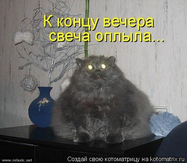 http://cs9443.vk.me/v9443750/8a7/Q1DQBUpYIMc.jpg