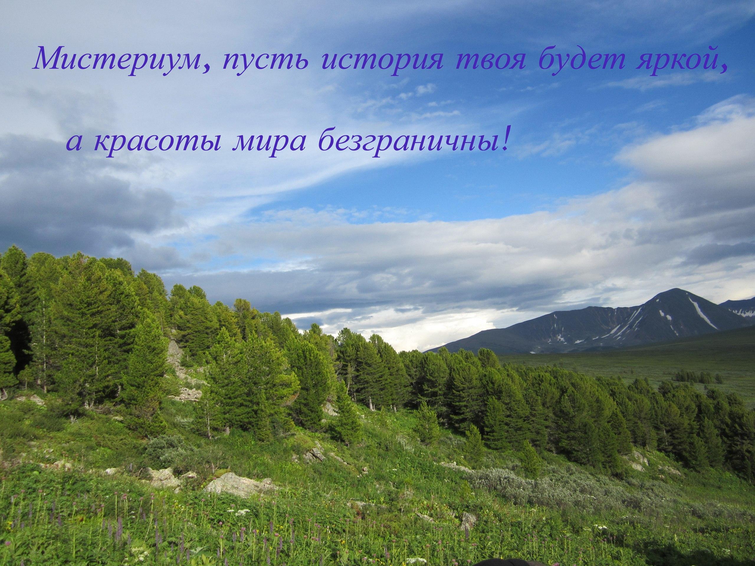http://cs9444.vk.me/v9444314/248f/GIIarP7bbis.jpg
