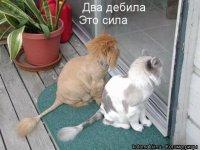 Юра Найчук, 24 августа , Казань, id70557324