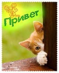 Karmen Neto, 23 февраля , Новосибирск, id102629193