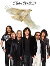 фото белый орёл группа
