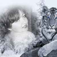 Вера Антонова, 23 июня 1989, Москва, id25626531