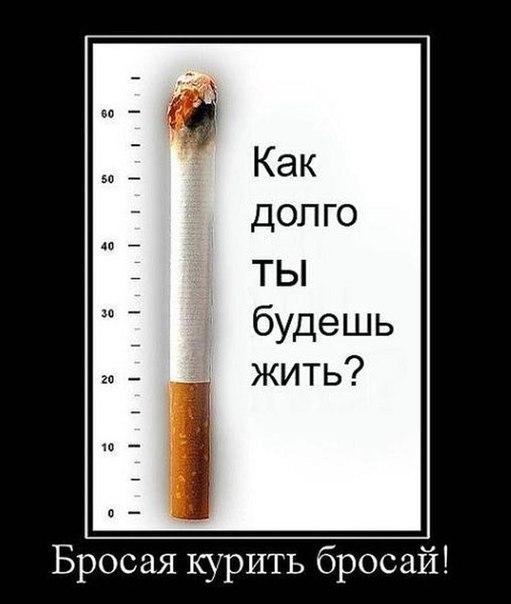 Легкий способ бросить курить tooltip результаты поиска легкий способ бросить курить