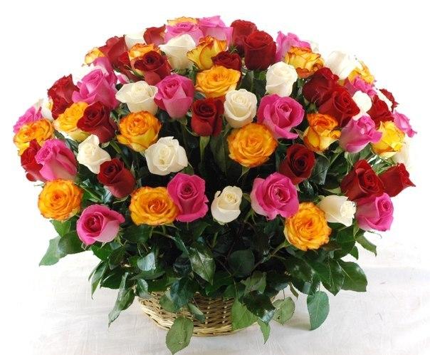 Красивые букеты роз фото самых шикарных композиций