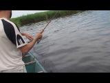 Рыбалка в Калмыкии