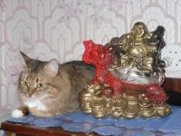 Мастер Ильфат, 21 декабря , Казань, id148061872