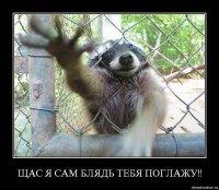 Георгий Тапурия, 23 июня 1994, Ростов-на-Дону, id78513751