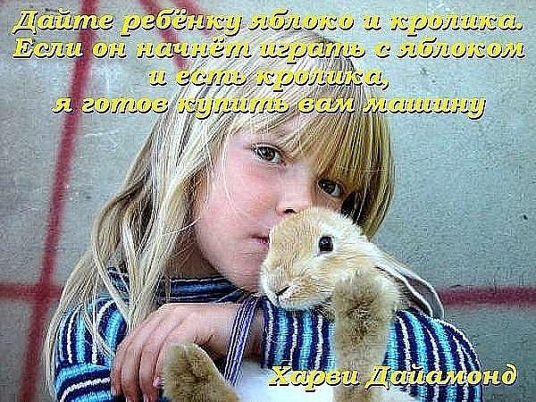 http://cs9459.vkontakte.ru/u6157311/100937947/x_2f759aab.jpg