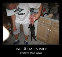 Чип Дейл, Москва, id62717901
