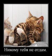 Роман Субботин, 5 декабря 1983, Санкт-Петербург, id69775173