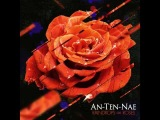 Ant-ten-nae - Vestige (An-ten-nae Remix)