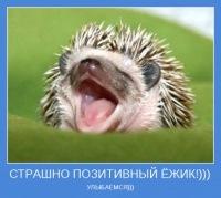 Алексей Сорокин, 5 февраля , Уфа, id155490153