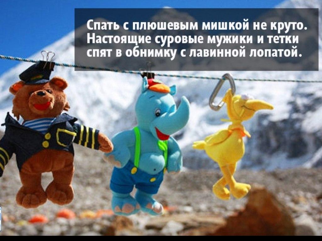 http://cs9472.vk.me/v9472200/29d9/FqTyW4pyDIE.jpg