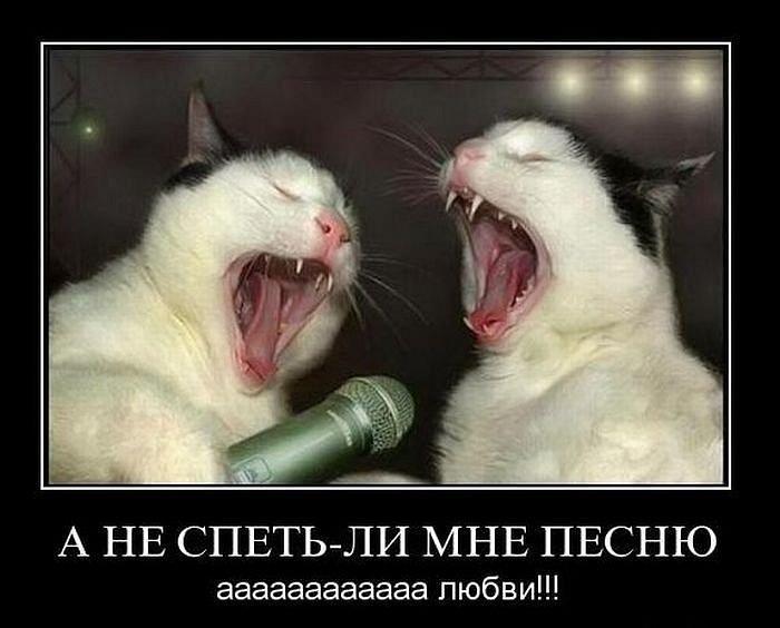 http://cs9477.vk.me/u18308404/128614005/y_ba49c428.jpg