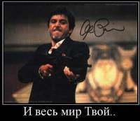 Илья Некрасов, 25 октября 1994, Санкт-Петербург, id91048054