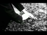 Sacrificio. Tarkovsky