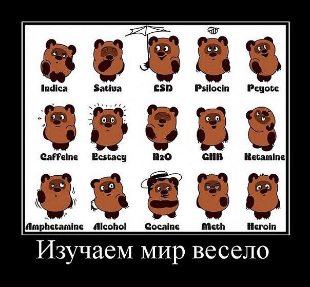 http://cs9482.vkontakte.ru/u16797604/118216057/x_f2171e8f.jpg