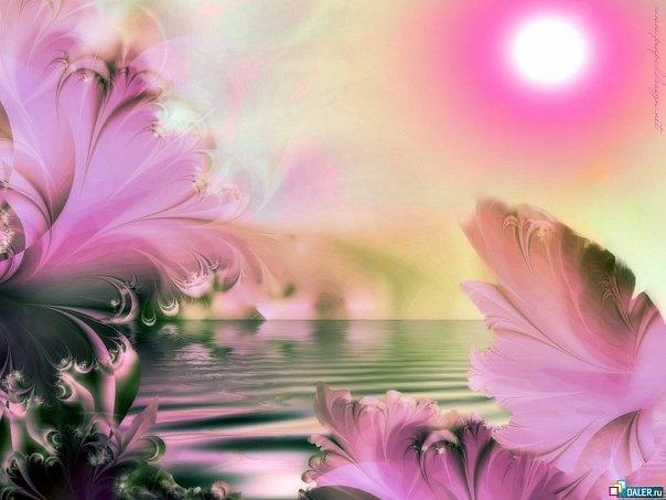 Розовое солнце - Фотохостинг - национальный фотоархив, размещение частных фотографий...