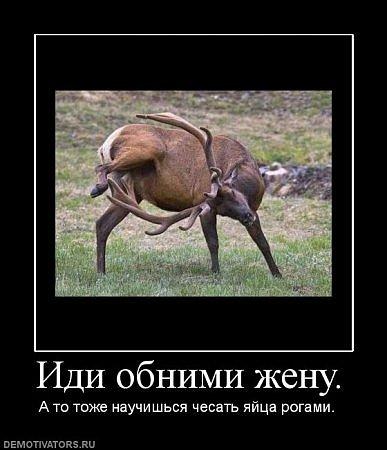 ПРОСТО ОЧЕНЬ ХОРОШЕЕ НАСТРОЕНИЕ(демотиваторы!)